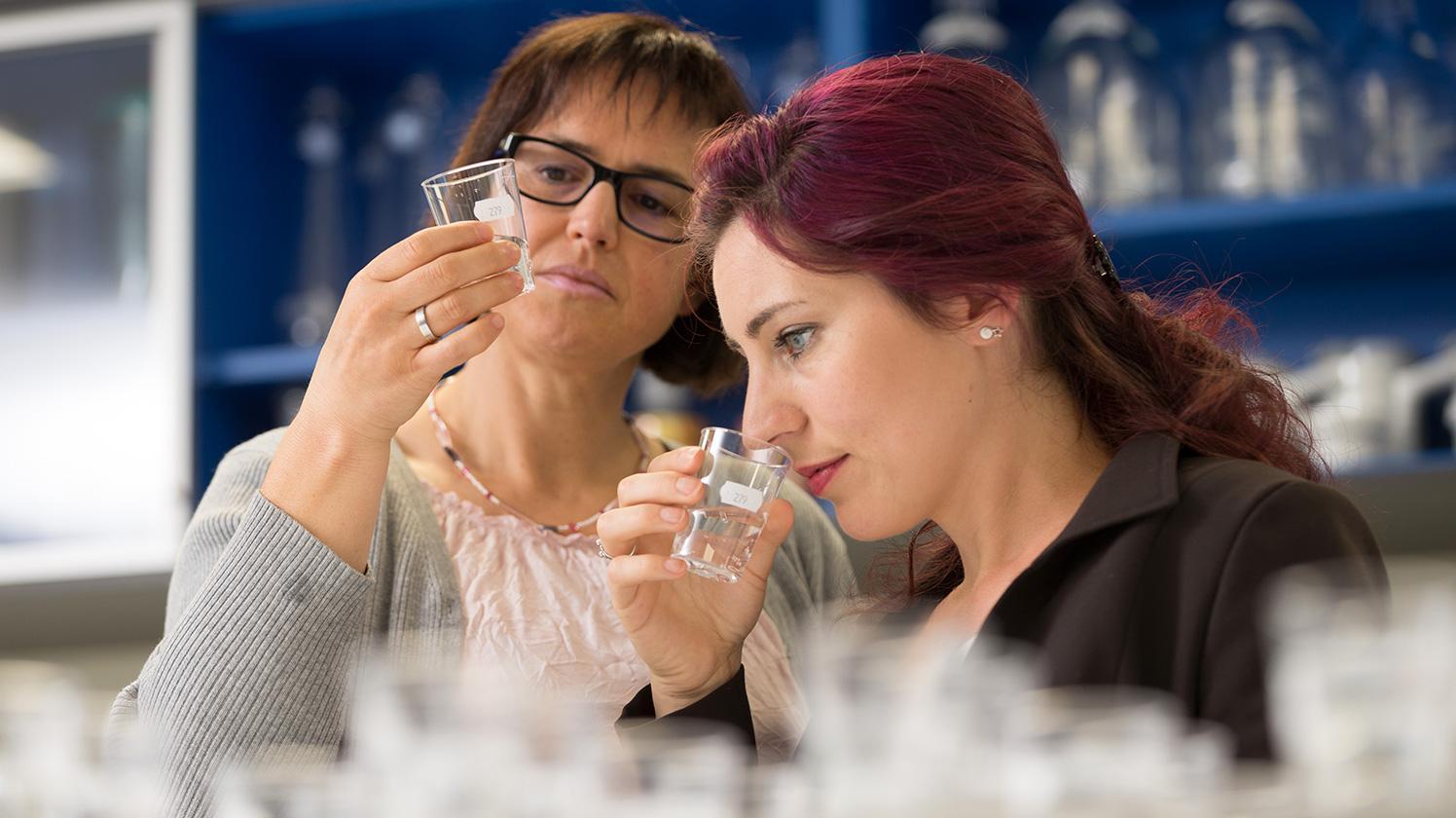 brita_experience_history_employees_sensory_laboratory_landscape